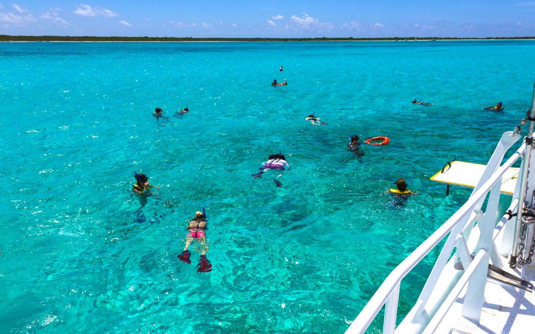 Los Mejores Lugares para bucear en Cozumel